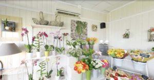 Intérieur de la boutique D'Fleurs à Fontenay-le-Comte en Vendee