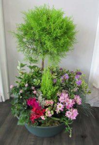 Coupe plantes tons rose rouge violet D'Fleurs, fleuriste à Fontenay-le-Comte en Vendee
