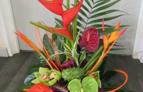 Composition florale - Tropicale - D'Fleurs Fontenay-le-Comte Vendée