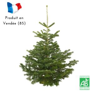 sapin Nordmann Bio cultivé en Vendée livré sur socle bois